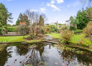 Thumbnail 4 bed detached house for sale in Crewkerne Road, Axminster