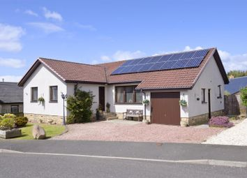 Thumbnail 4 bed bungalow for sale in Hirsel Place, Coldstream