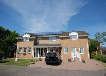 Thumbnail 6 bed detached house for sale in Hawkhill Drive, Stevenston