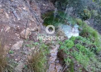 Thumbnail Land for sale in Corchas, Alferce, Monchique