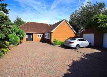 Thumbnail 6 bedroom detached bungalow for sale in Off Hertford Road, Hoddesdon, Hertfordshire