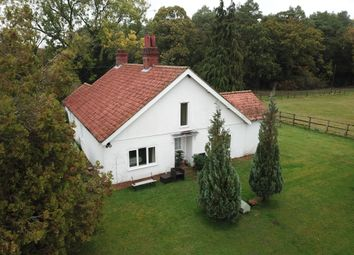 Thumbnail 3 bed detached bungalow to rent in Wretham Hall Estate, West Wretham, Thetford, Norfolk