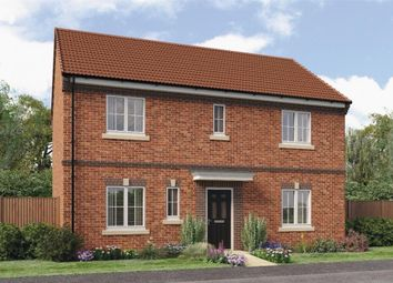 "Thumbnail 4 bed detached house for sale in ""Stevenson B"" at Croston Road, Farington Moss, Leyland"