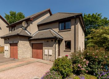 Thumbnail 3 bed semi-detached house for sale in Harestane Grove, Dundee