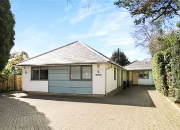 Thumbnail 4 bed detached bungalow for sale in Pyrford, Woking, Surrey