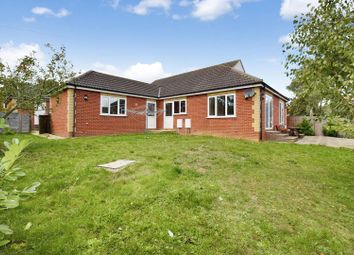 Thumbnail 4 bedroom detached bungalow for sale in Swan Street, Sible Hedingham, Halstead