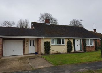 Thumbnail 4 bed bungalow to rent in Paget Place, Newmarket