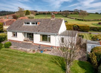 Thumbnail 3 bed detached bungalow for sale in Quantock Rise, Kingston St. Mary, Taunton