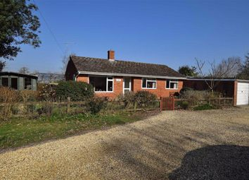 Thumbnail 3 bed detached bungalow to rent in Sway Road, Tiptoe, Lymington
