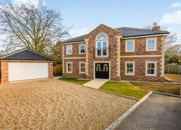 Thumbnail 4 bed detached house for sale in Chestnut Drive, Attleborough