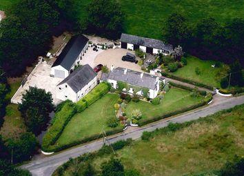 Thumbnail 4 bed detached house for sale in 75, Drennan Road, Lisburn