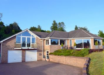 Thumbnail 4 bedroom detached house for sale in Colaton Raleigh, Sidmouth, Devon