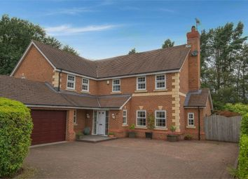 5 bed detached house for sale in Jenner Grove, Blythe Bridge, Stoke-On-Trent, Staffordshire ST11