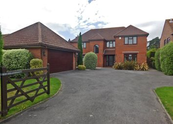 Thumbnail 4 bedroom detached house to rent in Stroud Green Lane, Fareham