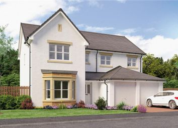 "Thumbnail 5 bed detached house for sale in ""Colville"" at Red Deer Road, Cambuslang, Glasgow"