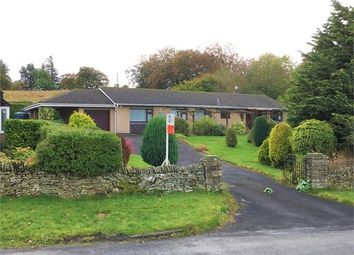 Thumbnail 4 bedroom detached bungalow for sale in Bede Lodge, Shilburn Road, Allendale