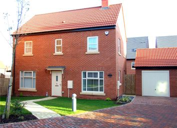 Thumbnail 3 bedroom detached house for sale in Lambeth Close, Derby