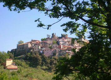 Thumbnail 2 bed semi-detached house for sale in Aulla, Massa And Carrara, Italy