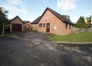 Thumbnail 3 bed bungalow to rent in Painters Meadow, Picket Piece, Andover