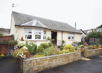 Thumbnail 2 bed detached bungalow for sale in Main Street, Dunlop, Kilmarnock