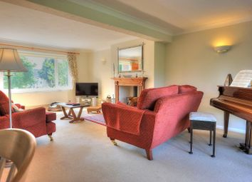 Thumbnail 4 bed detached house for sale in Rectory Road, Haddiscoe, Norwich