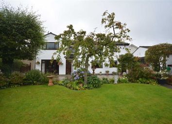 Thumbnail 4 bedroom detached house for sale in Bryn Seion Lane, Sychdyn, Mold
