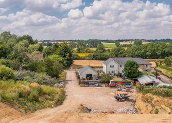 Thumbnail 4 bed semi-detached house for sale in Little Cornard, Sudbury, Suffolk