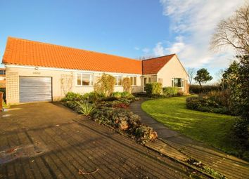 Thumbnail 4 bed bungalow to rent in Athelstaneford, North Berwick