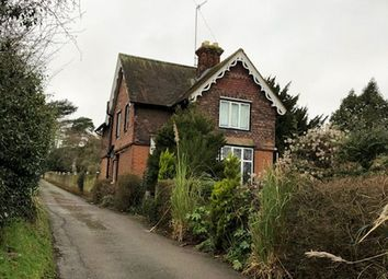Thumbnail 3 bedroom detached house for sale in North Road, Hertford