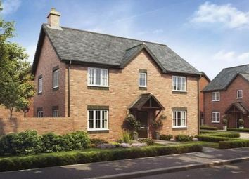 Thumbnail 4 bed property to rent in The Cedar, Barley Fields, Bramshall