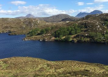 Thumbnail 5 bed detached house for sale in Fearna Lodge Estate, Lochinver, Sutherland