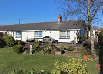Thumbnail 4 bed semi-detached bungalow for sale in Chittlehamholt, Umberleigh