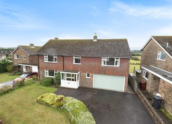Thumbnail 4 bedroom detached house for sale in Rothermead, Petworth