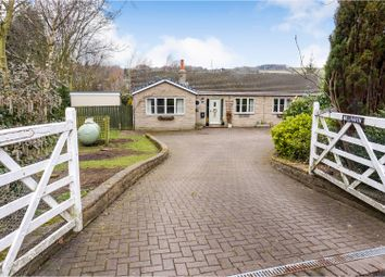 Thumbnail 4 bed detached bungalow for sale in Tow House, Hexham