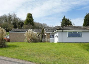 Thumbnail 3 bed semi-detached bungalow for sale in Westdean Close, River, Dover