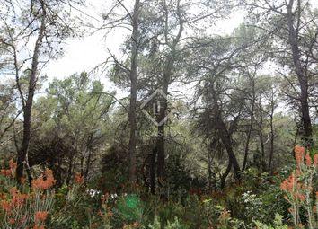 Thumbnail Land for sale in Spain, Ibiza, Santa Eulalia, Ibz23617