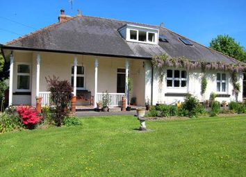Thumbnail 5 bed bungalow for sale in Llangybi, Lampeter