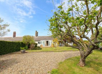 Thumbnail 4 bed semi-detached bungalow to rent in Pegwell, Ramsgate