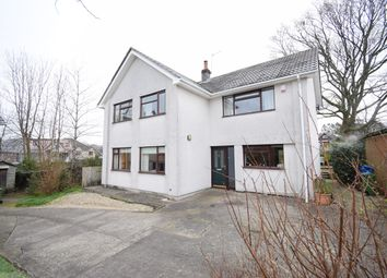 Thumbnail 4 bed detached house for sale in Cae Rhedyn, Croesyceiliog, Cwmbran