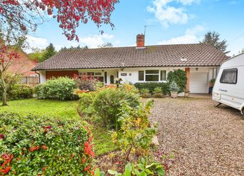 Thumbnail 3 bed detached bungalow for sale in Cookes Road, Bergh Apton, Norwich