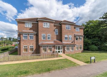 1 bed flat for sale in Wildman Court, Hertford SG13