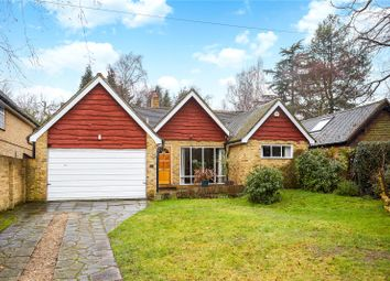 Thumbnail 3 bedroom detached house for sale in Eastwick Road, Hersham, Walton-On-Thames, Surrey