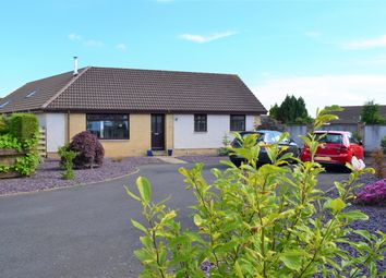 Thumbnail 4 bedroom detached bungalow for sale in 7 Northfield Park, Annan, Dumfries & Galloway