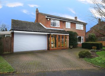 Thumbnail 4 bedroom detached house for sale in Chestnut Close, Dagnall, Berkhamsted
