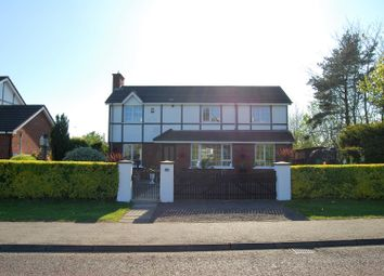 Thumbnail 3 bedroom detached house for sale in Highfield Park, Craigavon