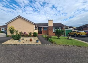 Thumbnail 3 bed bungalow for sale in Honiton, Devon