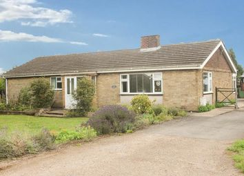 Thumbnail 3 bed detached bungalow for sale in Oakham Road, Greetham, Oakham