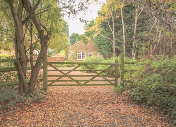 Thumbnail 2 bed detached bungalow to rent in Brackendale Road, Camberley, Surrey