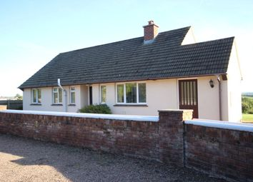 Thumbnail 3 bed detached bungalow to rent in Leigh Road, Chulmleigh