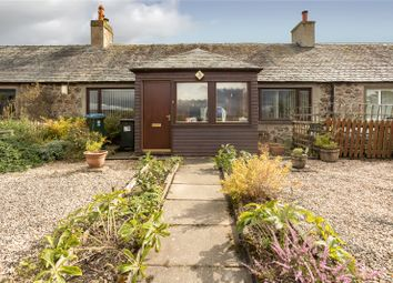 Thumbnail 2 bed terraced house for sale in Inchyra Village, Glencarse, Perth